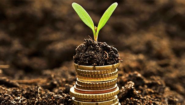strategies-socialmedia-crowdfunding La stratégie Social Media d'une campagne de crowdfunding