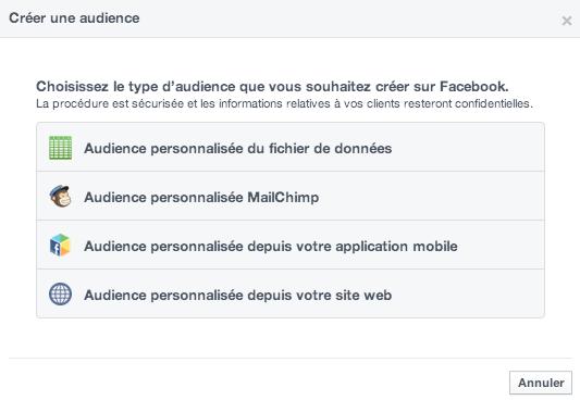 Capture-d'écran-2014-04-17-à-15.05.22 Comment cibler vos fichiers de contacts sur Facebook Ads ?