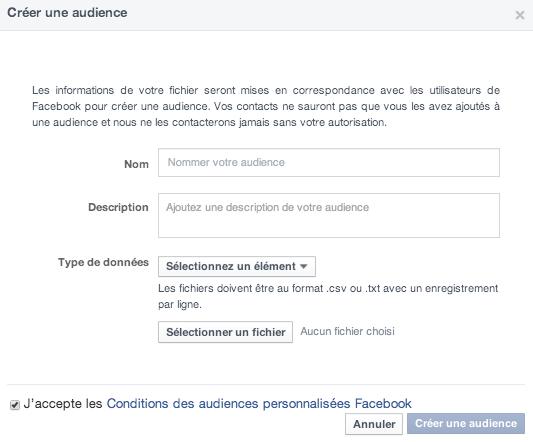 Capture-d'écran-2014-04-17-à-15.07.23 Comment cibler vos fichiers de contacts sur Facebook Ads ?