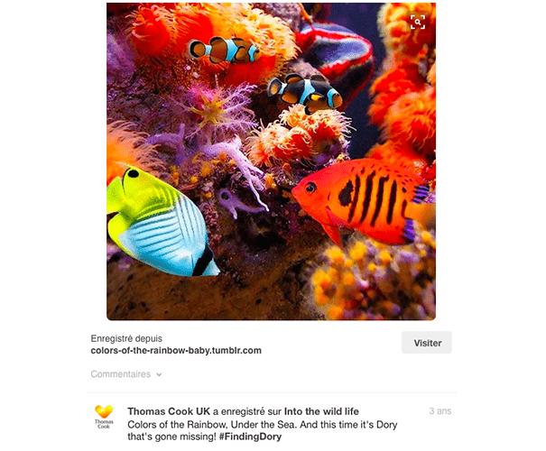 Thomas-cook-pinterest Exploiter Pinterest dans le secteur du tourisme