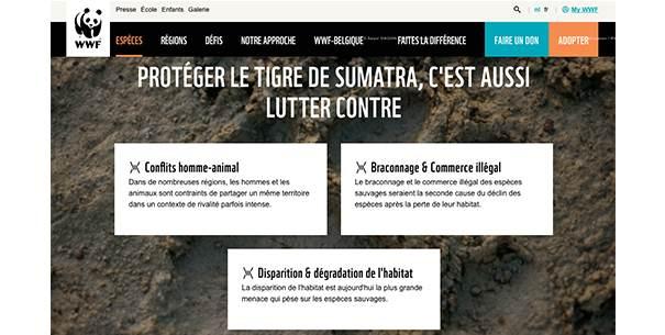 WWF_tigre La stratégie social media des ONG