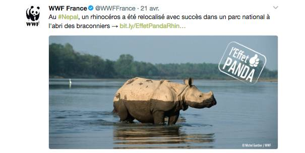 wwf La stratégie social media des ONG